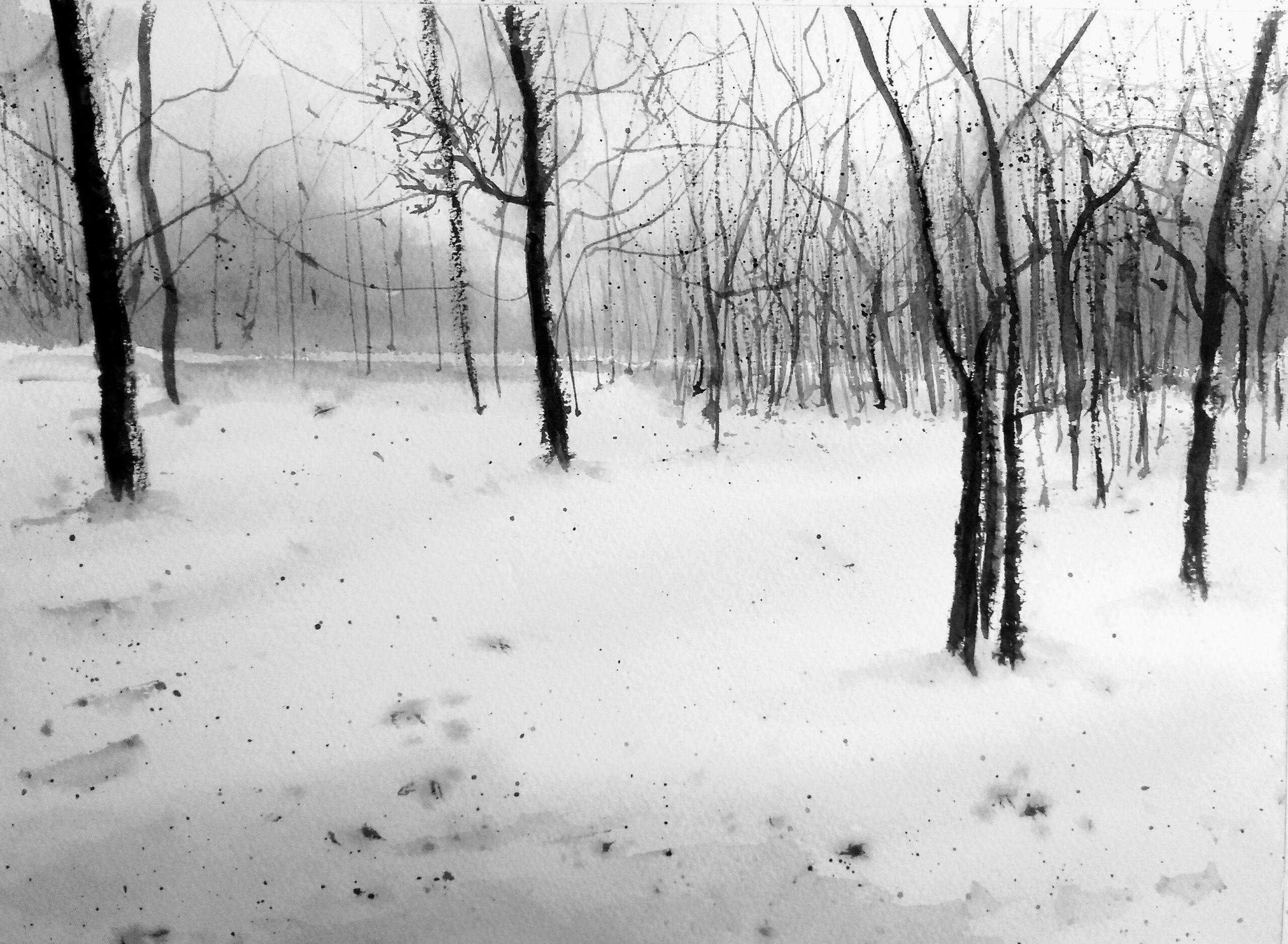 Frío bosque. Acuarela